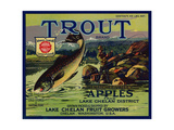 Warshaw Collection of Business Americana Food; Fruit Crate Labels  Lake Chelan Fruit Growers