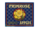 Warshaw Collection of Business Americana Food; Fruit Crate Labels  DWCL Primrose Brand