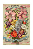 The Conyard and Jones' Co New Floral Guide  Autumn 1898