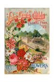 Seed Catalogues: John Lewis Childs: New  Rare and Beautiful Flowers Floral Park  NY  1890
