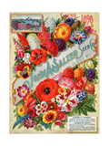Seed Catalogues: John A Salzer Seed Co La Crosse  Wisconsin  Spring 1898