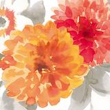 Peach Flower II Reproduction d'art par Sandra Jacobs