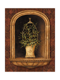 Olive Topiary Niches I