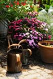 The Garden Nook IV