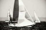 Race on the Chesapeake IV