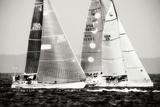 Race on the Chesapeake III