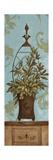 Blue Olive Topiary II