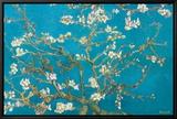Branches d'amandier en fleurs, Saint-Rémy, 1890 Tableau sur toile encadré par Vincent Van Gogh