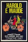 Harold et Maude Harold and Maude Tableau sur toile encadré