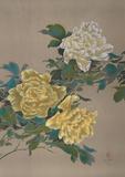 Yellow Flowers 13