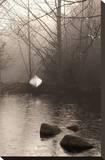 Silvered Morning Pond
