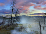 Steam Rising From Travertine Formations  Minerva Terrace  Mammoth Hot Springs  Yellowstone