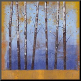 Birch Trees II