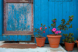 Potted Magenta Flowers and a Blue Doorway in the Himalayas