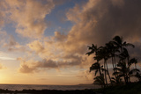 Silhouetted Palm Trees and Pinkish Clouds at Sunset on Poipu Beach