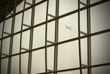 Airplane Flying Out of Hong Kong International Airport