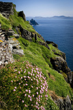 The Slopes of Skellig Michael Off the Kerry Coast  Ireland