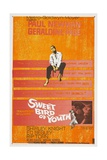 Sweet Bird of Youth  1962  Directed by Richard Brooks