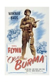 Objective  Burma!  1945  Directed by Raoul Walsh