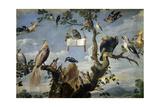 Concert of the Birds  1629-1630  Flemish School