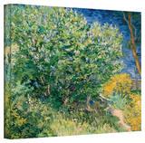 Vincent van Gogh 'Lilacs' Wrapped Canvas Art