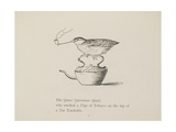 Quail Perched On Teapot  Smoking a Pipe From a Collection Of Poems and Songs by Edward Lear
