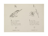 Kingfisher and Lily Illustrations and Verse From Nonsense Alphabets by Edward Lear