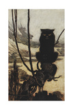 Illustration From Jorinda and Joringel Of a Black Cat