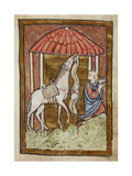 St Cuthbert's Horse Pulls Down Bread and Meat