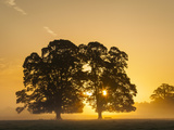 Sunrise  Usk Valley  South Wales  UK