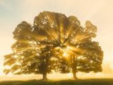 Sunrise  Usk Valley  South Wales  UK