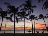 USA  Hawaii  Oahu  Honolulu  Waikiki Beach  Kapiolani Park