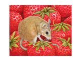 Strawberry-Mouse  1995