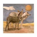 Donkeys  1989