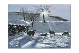 Winter Afternoon at Dentdale  1991