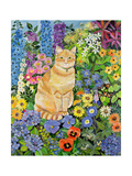 Gordon's Cat  1996