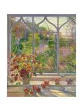 Autumn Windows  1993