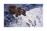 Alaskan Brown Bear  2002
