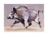 Running Boar  1999