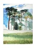 Wiltshire Pines  1989