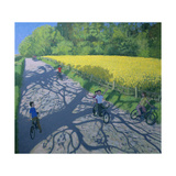 Cyclists and Yellow Field  Kedleston  Derby
