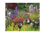 Cottage Garden  2007/8