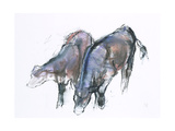 Calves  2006