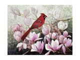 Cardinal  2001