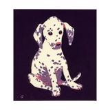 Dalmation Puppy  1950s