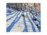 Tree Shadows  Morzine
