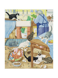Grandma and 10 Cats in the Kitchen