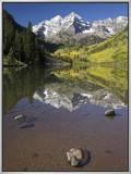 Aspens reflecting in lake under Maroon Bells  Colorado