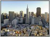 Transamerica Pyramid Building and Downtown from Top of Coit Tower