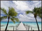 Fakarawa  Tuamotu Archipelago  French Polynesia Islands